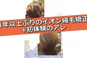 syukumo_head